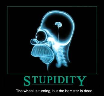 Stupidity Homer's Brain